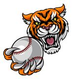 Tiger Holding Baseball Ball Mascot Illustration Stock