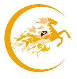 Tiger-horse symbol Royalty Free Stock Image