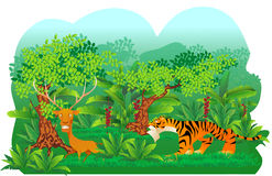 Tiger hunt a deer. Illustration of a tiger hunting a deer, cartoon style Stock Photos