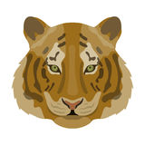 Tiger icon in cartoon style  on white background. Realistic animals symbol stock vector illustration. Stock Image