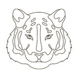 Tiger icon in outline style isolated on white background. Realistic animals symbol stock vector illustration. Stock Photos