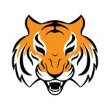 Tiger icon. Vector illustration for logo design, t-shirt Royalty Free Stock Photos