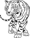 Tiger. Illustrated isolated tiger clip art image vector illustration