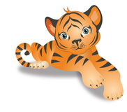 Tiger, illustration Royalty Free Stock Photography