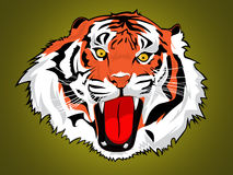 Tiger. Illustration of a head of a tiger Stock Photos