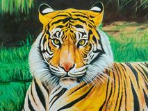 Tiger Illustration On The Wall. Stock Image