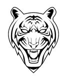 Tiger. Illustrator desain .eps 10 Stock Photos