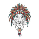 Tiger in the Indian roach. Indian feather headdress of eagle. Hand draw vector illustration Stock Photos