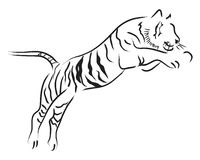 Tiger Jump Stock Photography