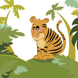 Tiger in the jungle Royalty Free Stock Images
