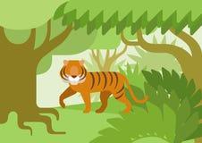 Tiger jungle habitat flat design cartoon vector wild animal. Tiger in the jungle habitat flat design cartoon vector wild animals. Flat zoo nature children Royalty Free Stock Photography