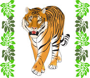 Tiger And Jungle Leaves Stock Image
