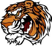 Tiger-Karikatur-Maskottchen mit den Verwirrung-Zähnen Lizenzfreie Stockfotos