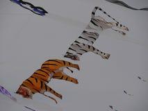 Tiger Kite Stock Photo