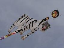 Tiger Kite Royalty Free Stock Image