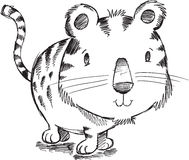 Tiger Kitten Cat Sketch Doodle Stock Image