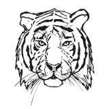 Tiger kopf Wildes Tier Das Logo für Ihr Design lizenzfreie abbildung