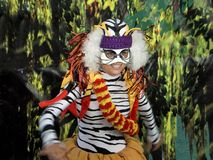 Tiger Lady. This is a shot of a dancer dressed in a colorful tiger costume royalty free stock images