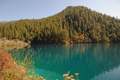 Tiger lake in Jiuzhaigou Stock Photos