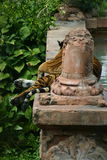 Tiger on ledge by water. Tiger resting on a decorative ledge by water Stock Image