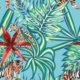 Tiger leopard tropical leaves lily seamless background blue Royalty Free Stock Image
