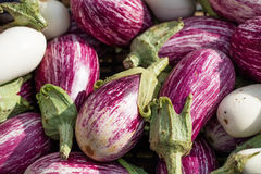 Tiger-like eggplants called nubia aubergines at the market Royalty Free Stock Photography