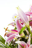Tiger-Lilienblumenanordnung Stockfotografie