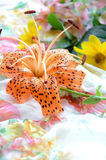 Tiger lily in arrangement Stock Image