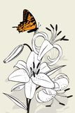 Tiger lily and butterfly Royalty Free Stock Photo