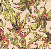 Tiger lily pattern Royalty Free Stock Photos