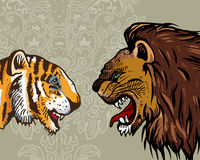 Tiger & Lion Royalty Free Stock Photos