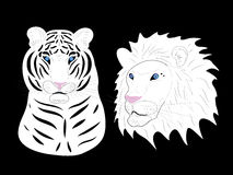 Tiger and lion albinos. Illustration Stock Photo