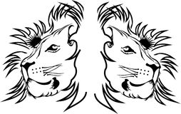 Tiger. Lion,king of beasts,Leo,guardian spirit of the forest,tiger,zoo,forest Stock Images