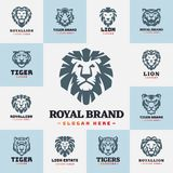 Tiger and lions face logo badge strength predator power wildcat vector illustration. Tiger head logo with beautiful animal. Vector hand drawn lion face Royalty Free Stock Images