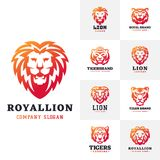 Tiger and lions face logo badge strength predator power wildcat vector illustration. Tiger head logo with beautiful animal. Vector hand drawn lion face Stock Photos