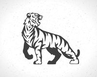 Tiger logo emblem template mascot symbol Royalty Free Stock Images