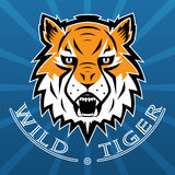 Tiger Logo Team Symbol Sport Mascot Icon lokalisierte Lizenzfreie Stockfotografie