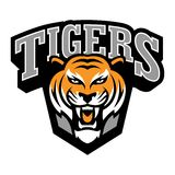 Tiger Logo Template Images stock