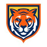 Tiger Logo Template Royalty Free Stock Photo