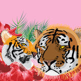 Tiger love mother father Royalty Free Stock Photos