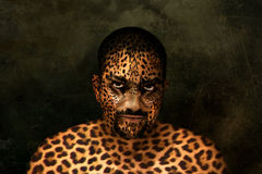 Tiger man. A mans portrait esited in Photoshop to look like a tiger Royalty Free Stock Photography