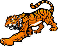 Tiger Mascot Body Graphic. Graphic Mascot Image of a Tiger Body Royalty Free Stock Photo