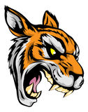 Tiger mascot character. An illustration of a fierce tiger animal character or sports mascot Royalty Free Stock Photography