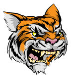 Tiger mascot character. An illustration of a fierce tiger animal character or sports mascot Stock Images