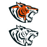 Tiger mascot. Head of angry tiger isolated on white background. Royalty Free Stock Images