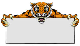 Tiger mascot sign Stock Images
