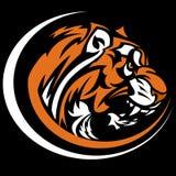 Tiger-Maskottchen-Grafik-Bild Lizenzfreie Stockfotos