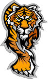 Tiger-Maskottchen-Karosserien-Grafik Stockbild