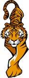 Tiger-Maskottchen-Zeichen Stockfotografie