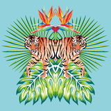 Tiger Mirror Print Tropical Leaves Blue Background Stock Photo